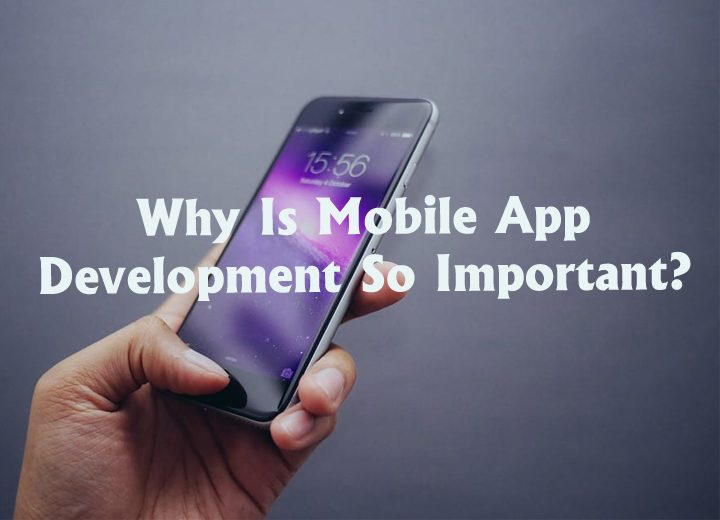 Why Is Mobile App Development So Important