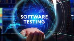 Software Testers