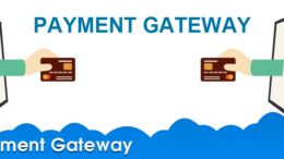Payment Gateway License in India